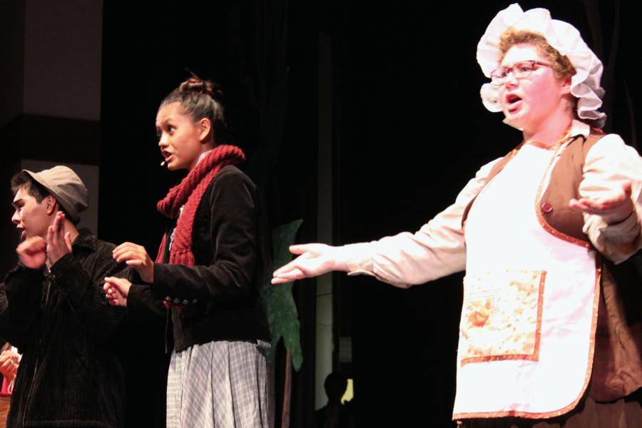 Spectacular 'Into the Woods' to open Friday