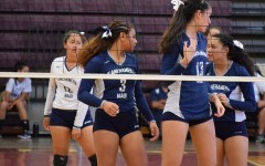 Girls volleyball rolls over Bears