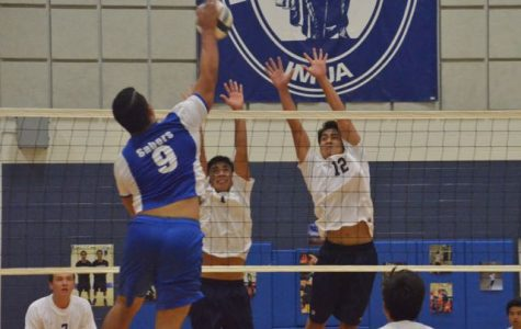 Boys volleyball celebrates senior night win