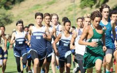 Cross country looks ahead at Relays