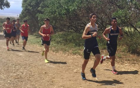 Select cross country runners take on HPA course