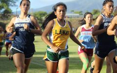 Four runners qualify for state meet