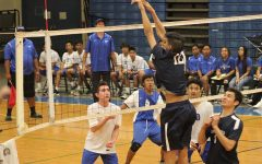 Boys Volleyball: Warriors defeat Sabers