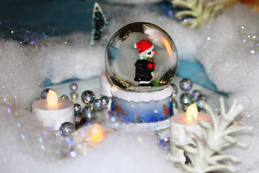 Winter+Ball+2012%3A+An+evening+%27under+the+snowglobe%27