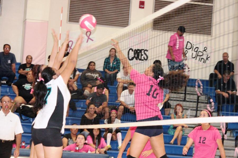 Varsity girls volleyball digs pink, bound for state tourney