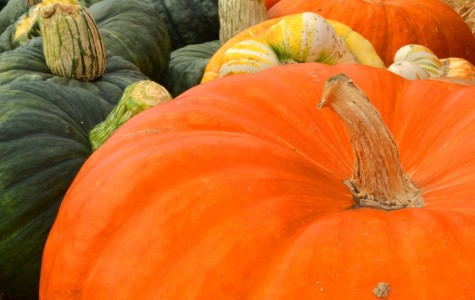 Five Web sites for a smooth Thanksgiving
