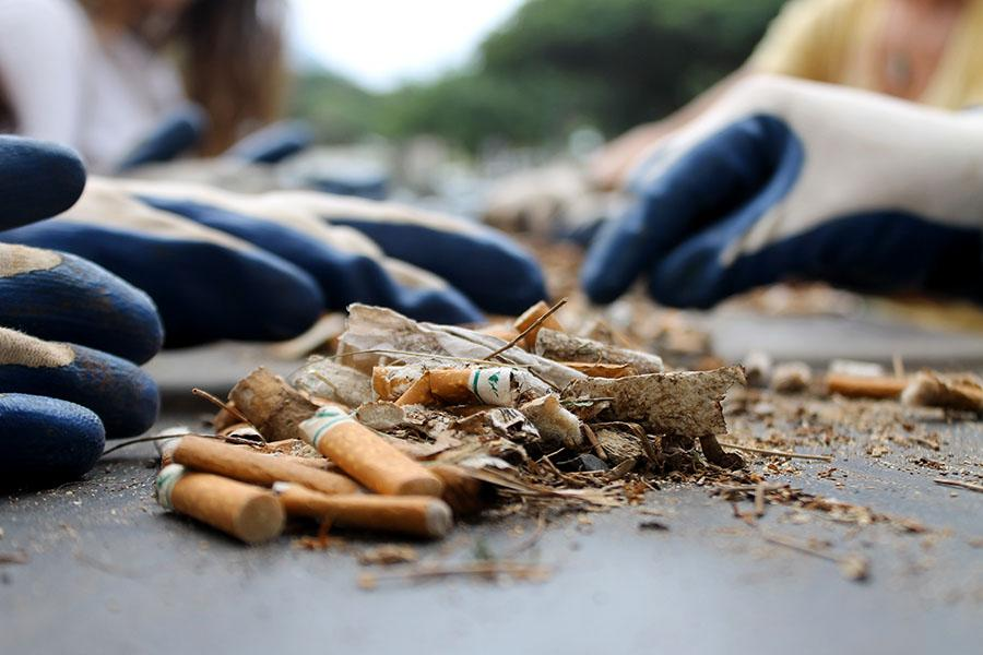Student volunteers count cigarette butts that were collected during an island-wide beach clean-up on Sunday, January 12, 2014.