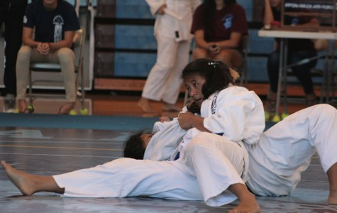 Four Warriors take first in judo match
