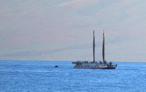 Maui welcomes Hōkūleʻa, Hikianalia