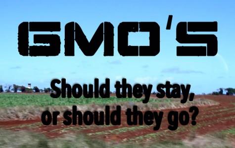 GMO initiative on November ballot begs clarification