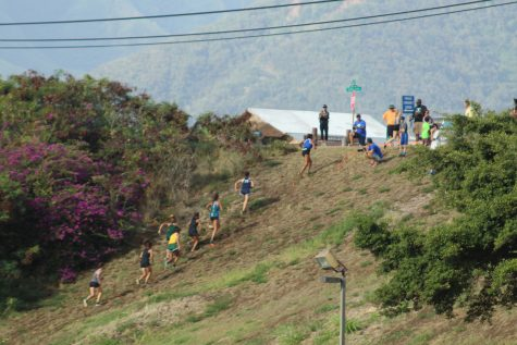 Previously directed straight, the runners were re-guided up a steep hill.