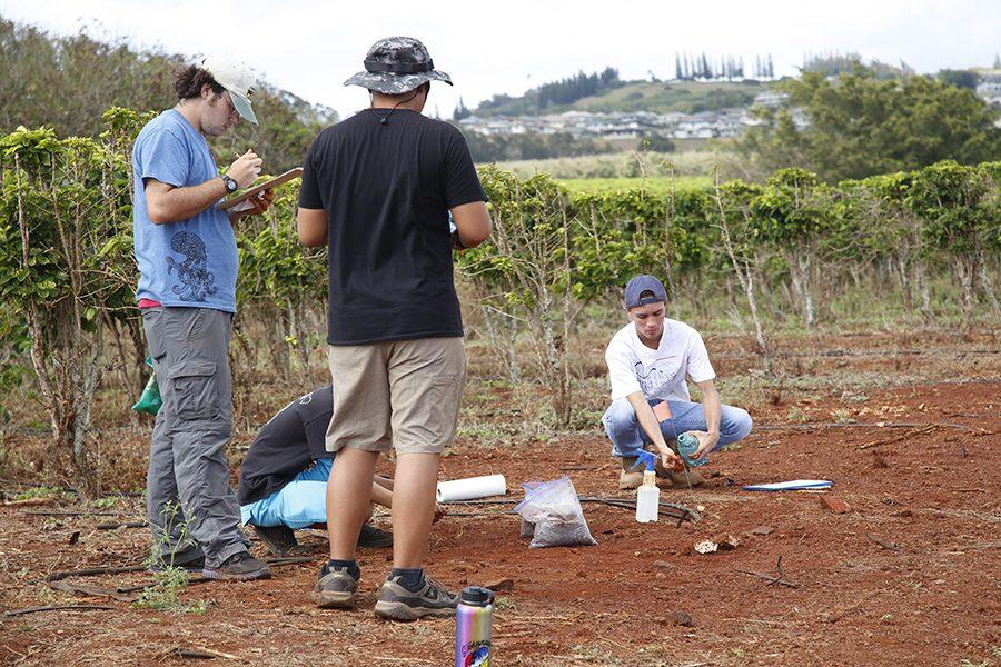 Senior+Kupono+Aguirre+inspects+the+soil+to+give+it+a+land+classification.