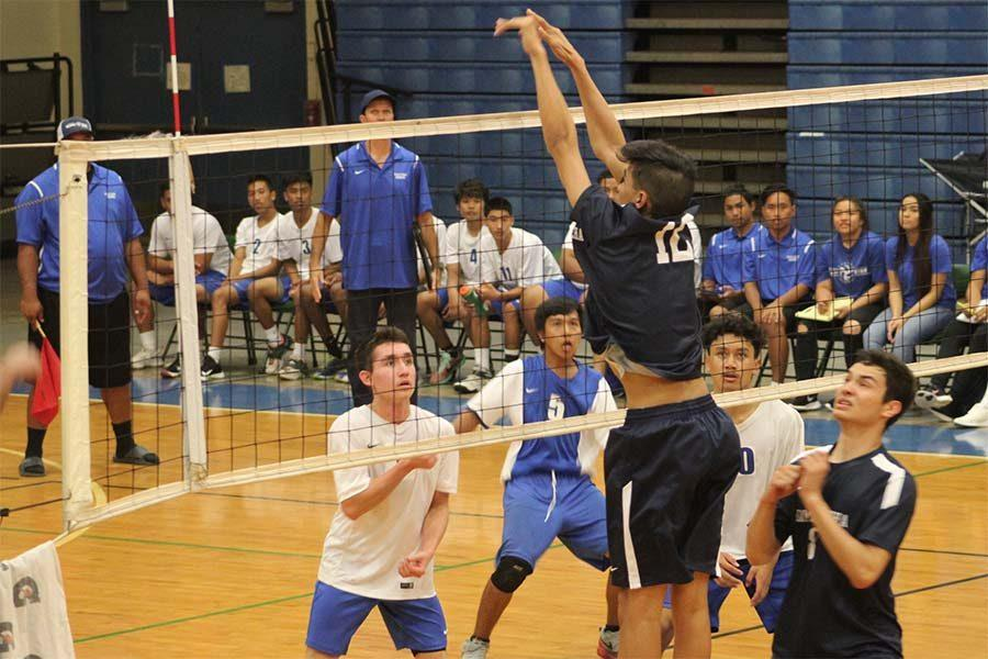 Haweo Johnson single-handedly blocks a spike by the Sabers Mar. 15 at Maui High School Gymnasium. The Warriors defeated the Sabers in three out of four sets, making their record 3-1 with the one loss against Na Ali'i.