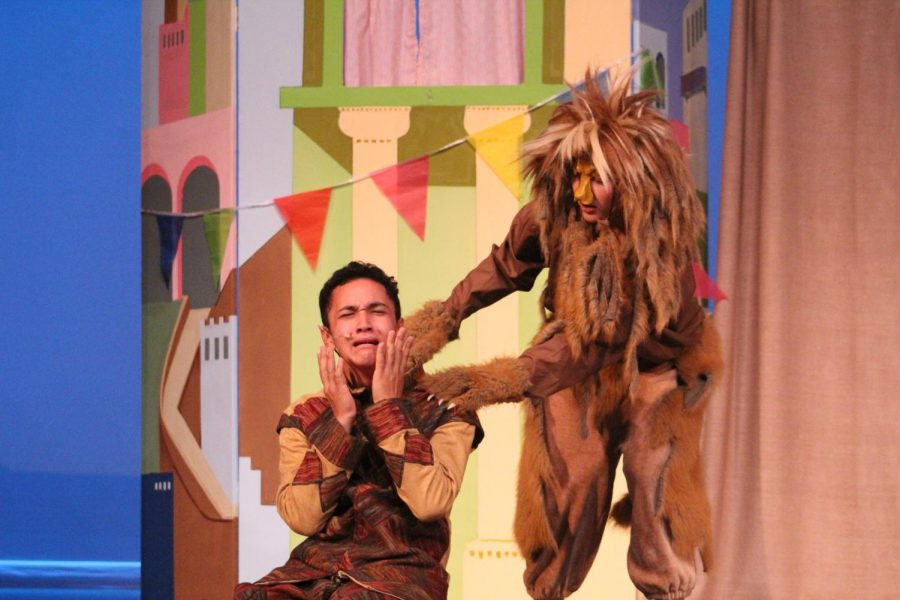 The Lion, played by Taytum Herrick, attacks Androcles (Maverick Akana) in the Drama Clubʻs performance of ʻAndrocles and the Lion.