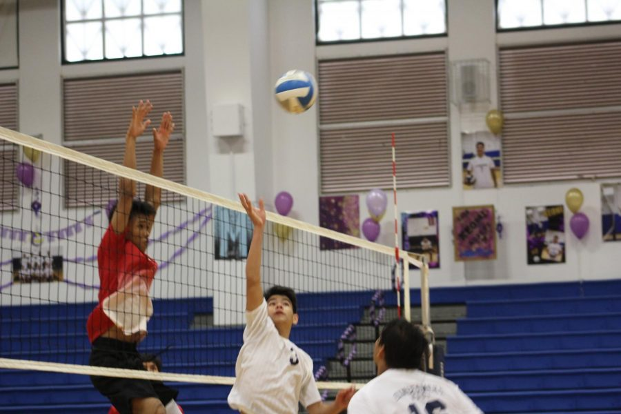 Steven+Gushiken+reaches+up+to+hit+the+ball+over+the+net.