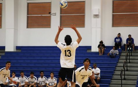 Boys Volleyball: Peters, Adolpho lead undefeated MIL season